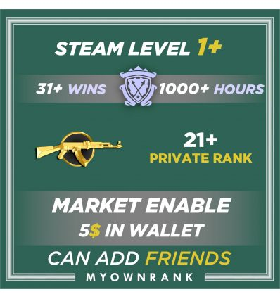 Prime MG1 | 1000+ Hours | Private Rank 21+ | FACEIT READYMGH