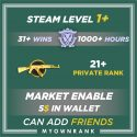 Prime MG1 | 1000+ Hours | PR 21+ | Can Add Friends | 5$ On Steam Market | Faceit Enable