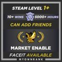 CSGO Prime LE-LEM | 5000+ Hours | Can Add Friends | Market And Faceit Available