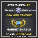CSGO Prime GE | 5000+ Hours | Can Add Friends | Market And Faceit Available