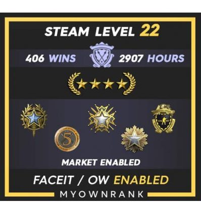 GNM   406 Wins 2907 Hours   16-19-20 Medal   5 Year Veteran Coin & LB   Steam level 22   Faceit Available
