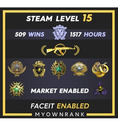 DMG | 290 Wins 2192 Hours | 18-19-20 Medals | 3 x Coins | 2 x Trophy| Steam level 41 | faceit NOT Available