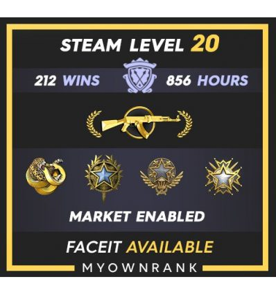 GNM | 541 Wins 1668 Hours | 18-19(2)-20 Medals | Steam Level 30 | Faceit Available
