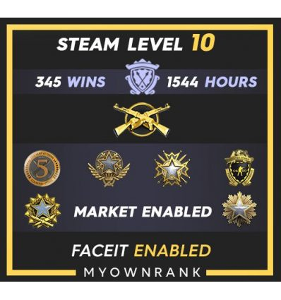 GNM | 486 Wins 1782 Hours | 18-19(2)-20 Medals | Steam Level 36 | Faceit available