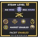 MGE |345 Wins 1544 Hours |16-17-19-21 Medals |5 Year Coin | Steam Level 10 | Faceit Available